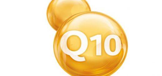 Donde encontrar la Coenzima Q10
