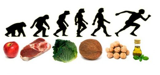 Como hacer correctamente la dieta paleo